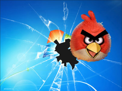 angry birds windows xp